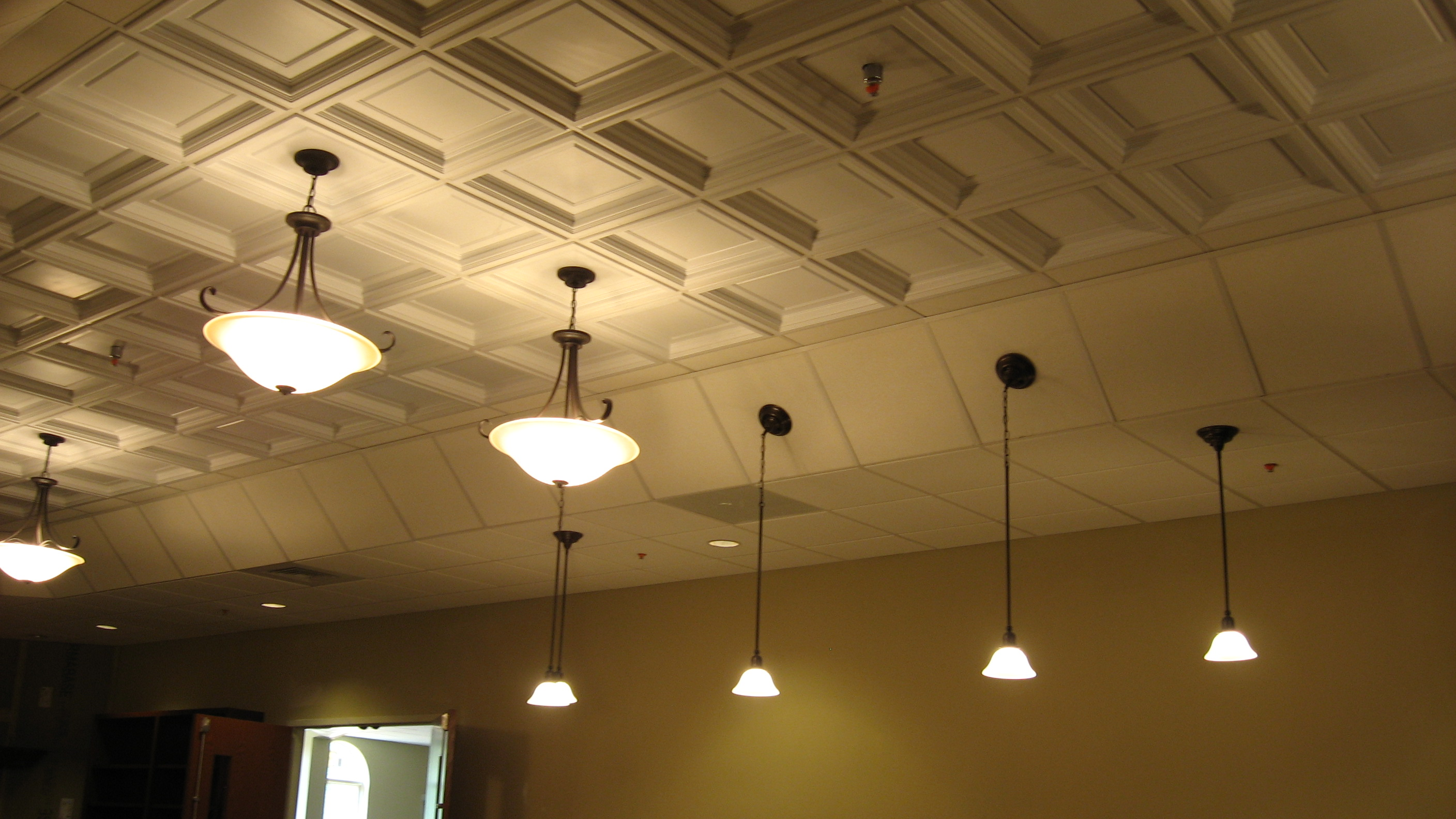 Decorative Ceiling Home Design Ideas, Pictures, Remodel and Decor